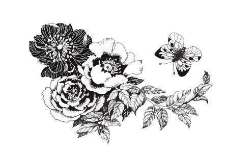 dibujos lineales: Hermoso blanco y negro, negro y flor blanca aislados. Líneas y trazos de contorno dibujados a mano