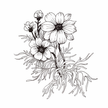 Beautiful monochrome, black and white flower isolated. Hand-drawn contour lines and strokes  イラスト・ベクター素材