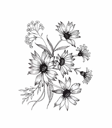 black and white flowers: Beautiful monochrome, black and white flower isolated. Hand-drawn contour lines and strokes Illustration