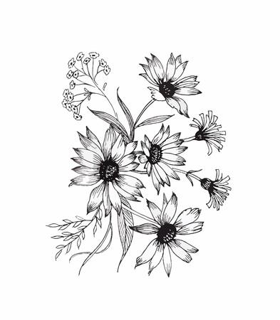 jardines con flores: Hermoso blanco y negro, negro y flor blanca aislados. Líneas y trazos de contorno dibujados a mano