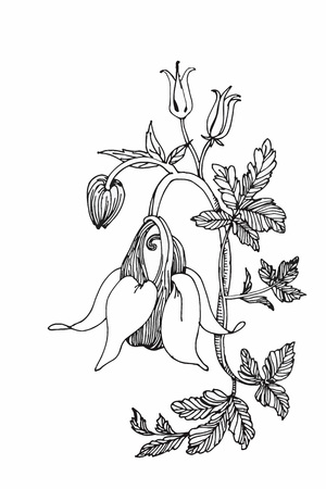 Beautiful monochrome, black and white flower isolated. Hand-drawn contour lines and strokes Vettoriali