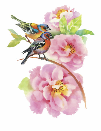 Watercolor wild exotic birds on flowers.