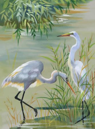 Heron birds watercolor vector illustration.