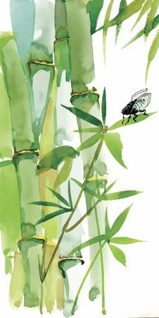 bambou: Décoratif fond aquarelle de bambou pour votre conception. Branches verticales aquarelle sur fond blanc Illustration