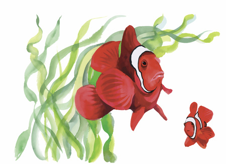 and marine life: Watercolor Marine life background with Tropical fish. Illustration