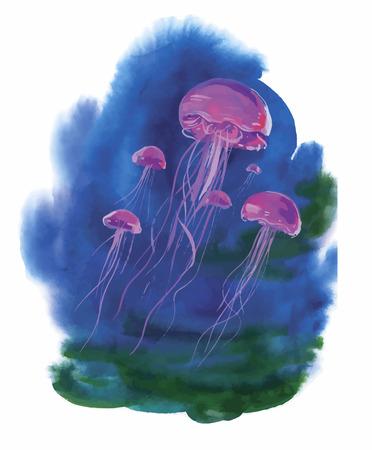 hydrozoa: Watercolor Hand drawn jellyfish at Sea.