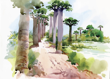 Watercolor painting of summer landscape with park way with trees vector illustration.