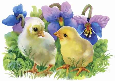 Yellow Watercolor chickens over garden flowers background vector illustration.