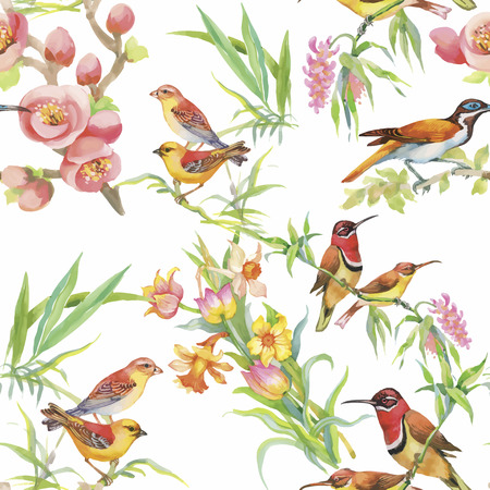 abstract birds: Watercolor Wild exotic birds on flowers seamless pattern on white background.