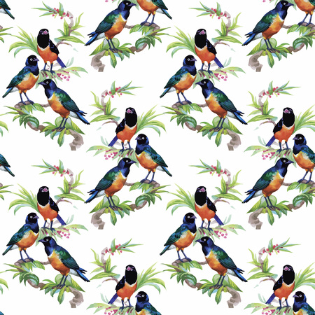 aves exoticas: Watercolor Wild exotic birds on flowers seamless pattern on white background.