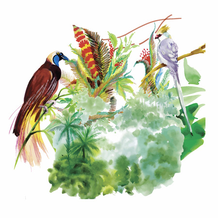 aves exoticas: Watercolor hand drawn pattern with tropical summer flowers of and exotic birds. Vectores