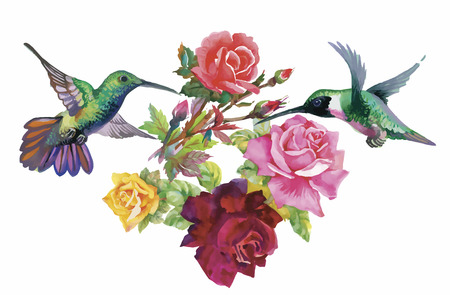 birds on branch: Watercolor hand drawn pattern with tropical summer flowers of and exotic birds. Illustration