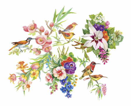 Watercolor hand drawn pattern with tropical summer flowers of and exotic birds. Stock Illustratie