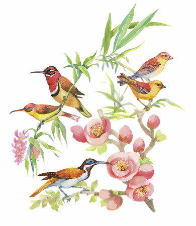 Watercolor hand drawn pattern with tropical summer flowers of and exotic birds. Vettoriali
