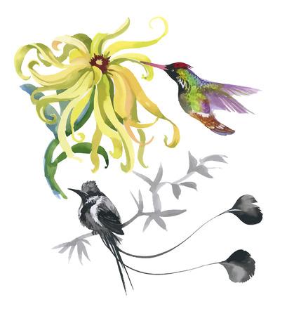 Acquerello mano modello disegnato con tropicali fiori estivi di e uccelli esotici. Archivio Fotografico - 45502294