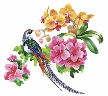 arbol pájaros: Flores de jardín y aves faisán patrón acuarela.