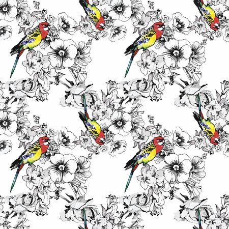aves exoticas: Exotic birds parrot with flowers colorful seamless pattern