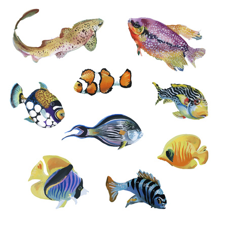 Marine life watercolor set with Tropical fish.