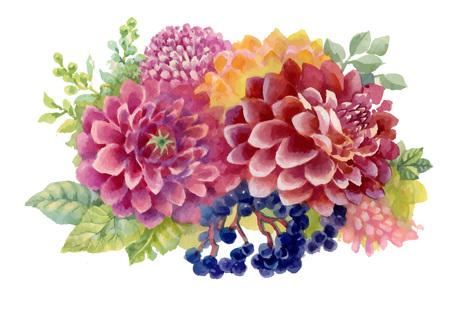 Aquarelle automne jardin fleuri fleurs illustration isolé sur fond blanc Vecteurs