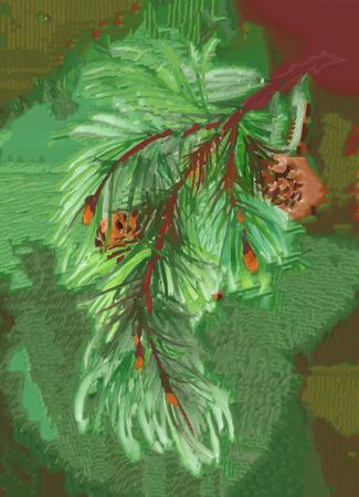 coniferous: Watercolor coniferous branch with pine cones