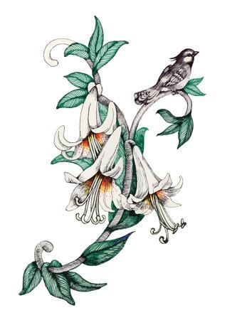 Gemalter Blumenstrauß des Gartens blüht mit Vogel auf weißem Hintergrund Standard-Bild - 61635341