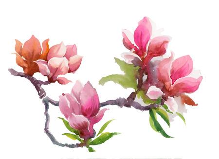 Watercolor Summer blooming pink magnolia flowers