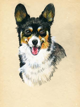 shih tzu: Puppy dog hand drawn illustration sketch