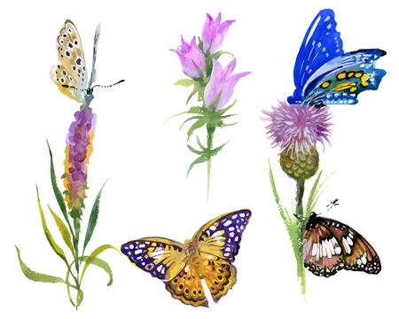 i fiori e le farfalle selvaggi dell'acquerello hanno impostato isolato su priorità bassa bianca