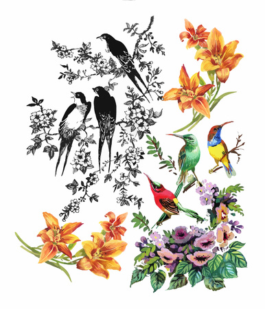 exotic birds: Watercolor hand drawn pattern with summer flowers and exotic birds