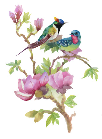 Watercolor hand drawn colorful beautiful flower and birds. 일러스트