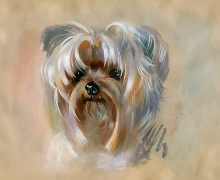 Hand drawn cute Yorkshire terrier dog. Reklamní fotografie - 89225785