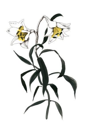 Hand getekend schilderij met kleurrijke bloemen op witte achtergrond.