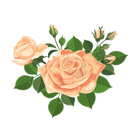 Vector. Bouquet of roses. Yellow flower. Watercolor illustration. Rose Bud isolated on white. Roses, buds, leaves and flowers. Wedding, birthday, design, invitation card Template