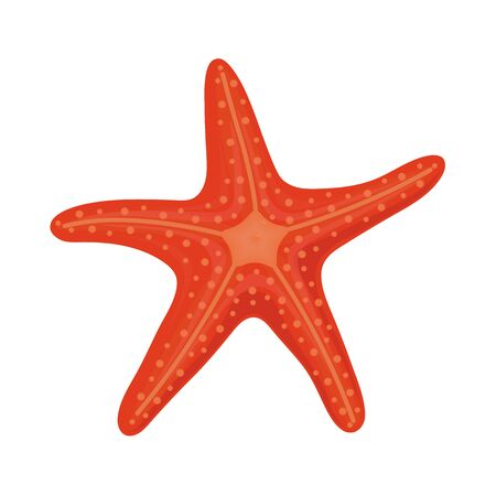 Red starfish in cartoon style for summer design elements isolated on white background 일러스트