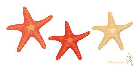 Starfish in cartoon style: print summer design element pattern on white background Çizim
