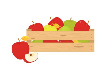 Box of fresh fruit. Ripe Apple fruit harvest in wooden box isolated on white background. A natural, healthy eating concept. Vector.