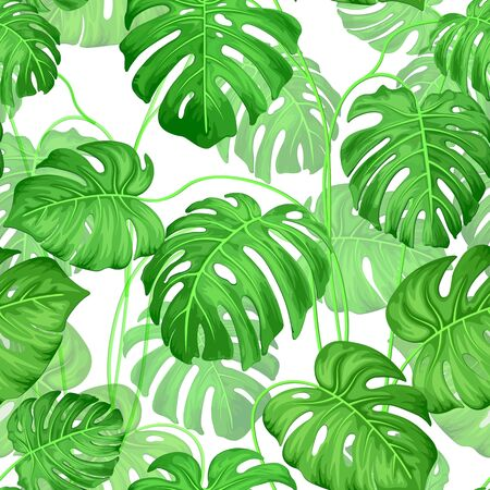 Green leaves of tropical plant monstera. Seamless exotic leaf background on white. Amazing leaf pattern. Vector graphics.
