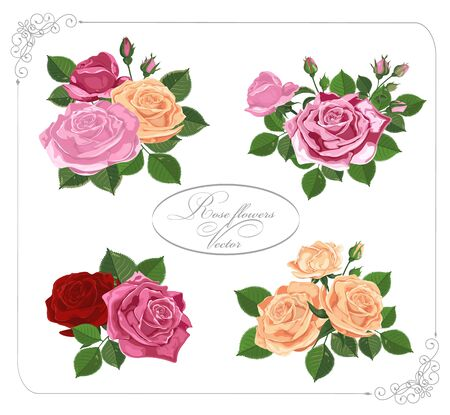 Vector floral design in frame.Bouquets of red pink yellow roses. Pink red wedding flowers and delicate leaves. Elements are isolated on white-Vector graphics.
