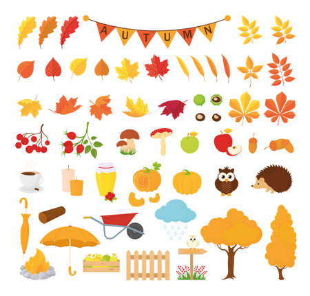 Autumn icon pack.Various autumn symbols autumn leaves maple chestnut pumpkin mushrooms Apple forest animals Hedgehog owl jam umbrella and others.Vector cartoon style for the card poster tag labels set 向量圖像