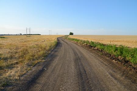 Dirt road through a wheat field, blue sky Stock Photo - 30530801