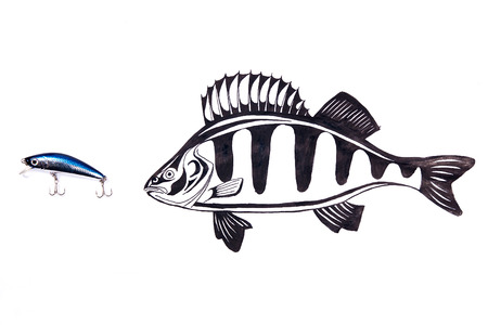 Fishing plastic bait with drawing perch on the white background. Painting with ink.
