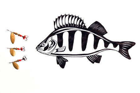 perch: Fishing metal baits with drawing perch on the white background. Painting with ink.