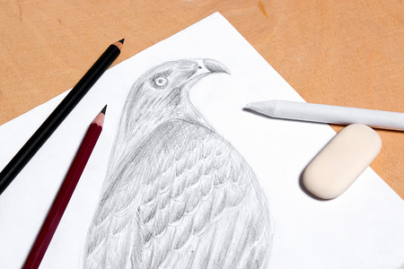 graphite: Graphite pencil, eraser and stamp with drawing hawk on the wooden background.
