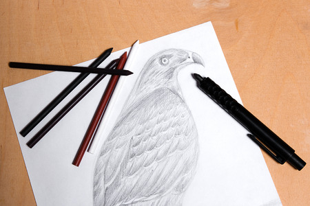 art materials: Clutch pencil with drawing hawk on the wooden background. Clutch pencil and different kinds of art materials: sanguine, graphite, crayons, charcoal over wooden background.