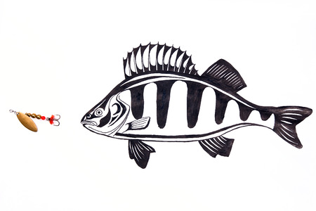 white perch: Fishing metal bait with drawing perch on the white background. Drawing with ink fountain pen. Stock Photo
