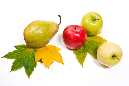 thee: Fresh green pear and two apples in red and green color on the yellow autumn leafs. Group of juicy ripe fruits. Thee autumn maple leaf in yellow and green color as background for fruits.  Isolated on white background.