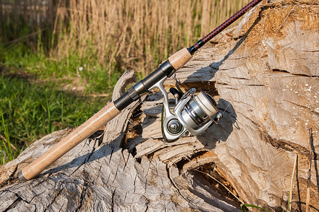 sportfishing: Fishing rod with fishing reel on the natural background. Spinning on the old tree with brown bark. Stock Photo