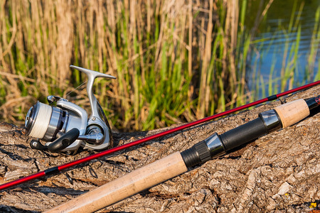 spinning reel: Fishing rod with fishing reel on the natural background. Spinning on the old tree with brown bark. Stock Photo