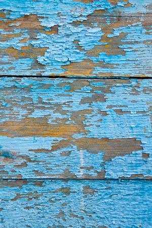 distressed background: Wood texture with painting color peeled off. Flaking paint - wood background texture.