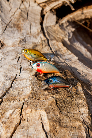 sportfishing: Assorted of various kind of fishing baits on the natural background. Objects on the  old tree with brown bark.